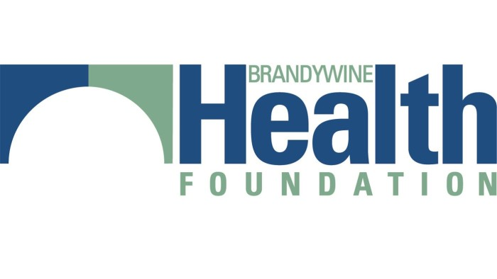 Local Health, Charity Experts Join Coatesville's Brandywine Health Foundation