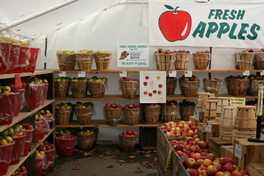 Chester County Ag Notes: Apples For Every Season