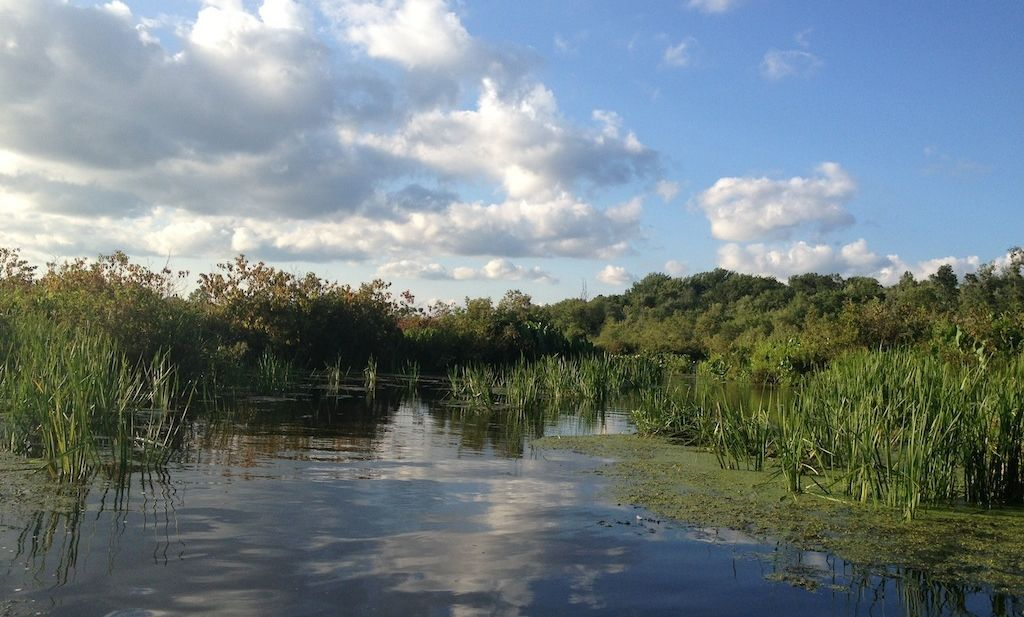 Chester County Briefs: Land Trust Takes Stewardship of Ancient Marsh, Vanguard's 'Sponsor-a-Child' Event, and Commissioners to Speak on Budget Impasse