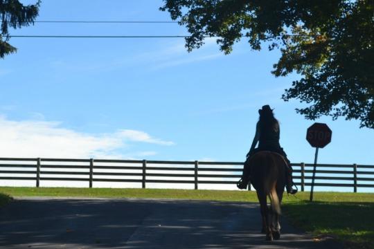 West Bradford Resident Rides Forth to Help Preserve Crebilly Farm