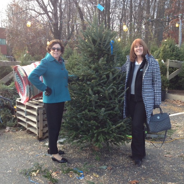 CCEDC's Kathy Field and Kathleen Nader pick out the organization's holiday tree