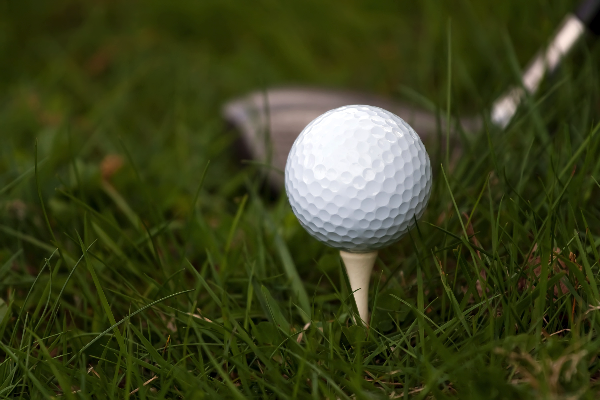 Registration Wide Open for GWCC's Quest for the Chamber Golf Outing