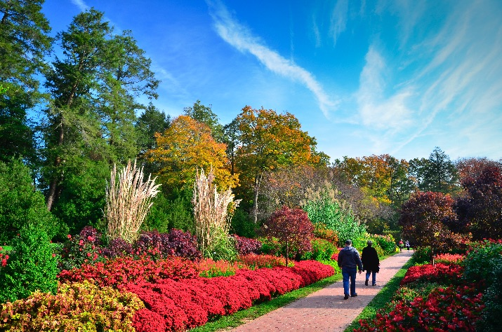 Longwood Gardens Helps Bring Record Number of Visitors to Philly Region