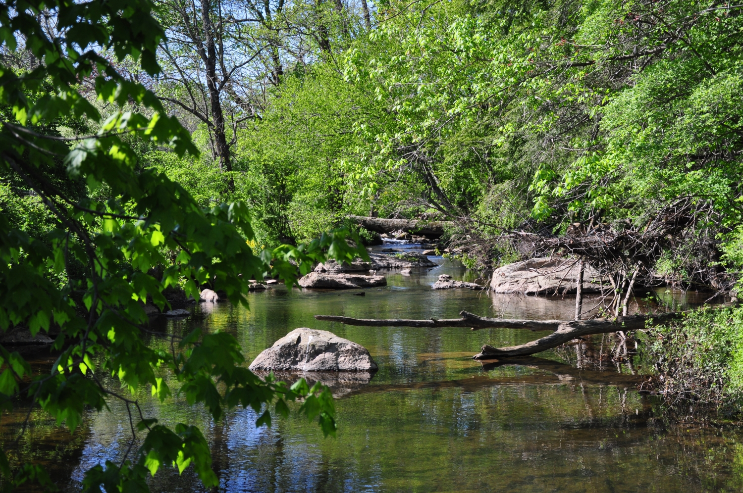Willistown Conservation Trust Receives Grant to Advance Watershed Protection