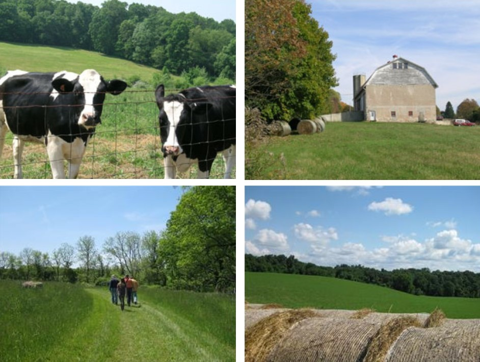 Grants Available for Farmland Preservation in Chester County