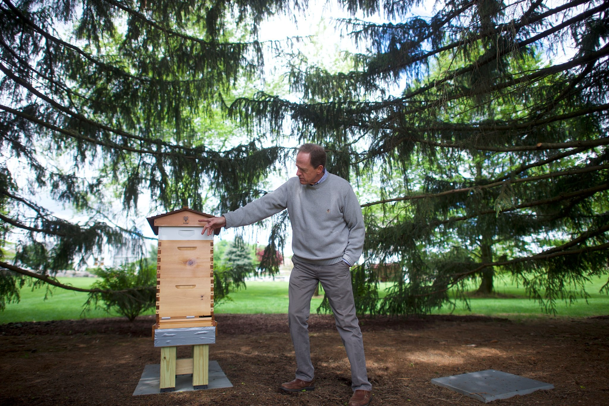 New York Times: Senator Toomey Takes Up Beekeeping to Relax