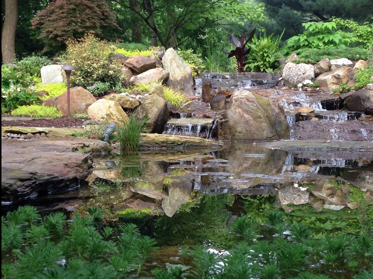 Set for July 29-30, Water Garden Tour Benefits Chester County Food Bank