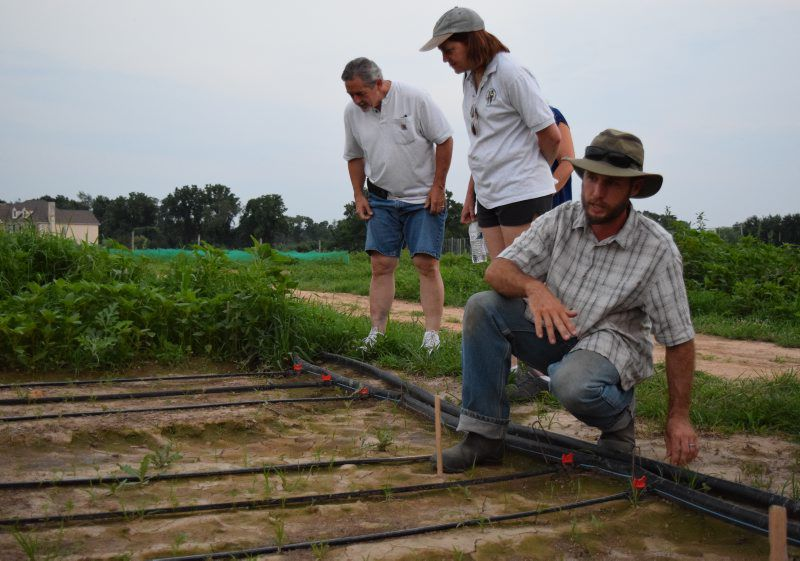 Downingtown's Two Gander Farm Cultivating a Bountiful Future