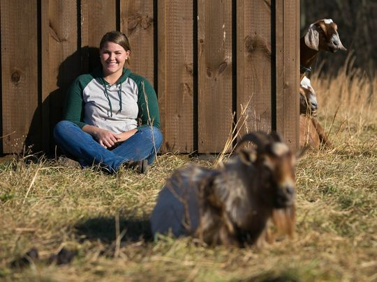 Lincoln University-Based Startup Uses Goats to Clear Land in Eco-Friendly Way