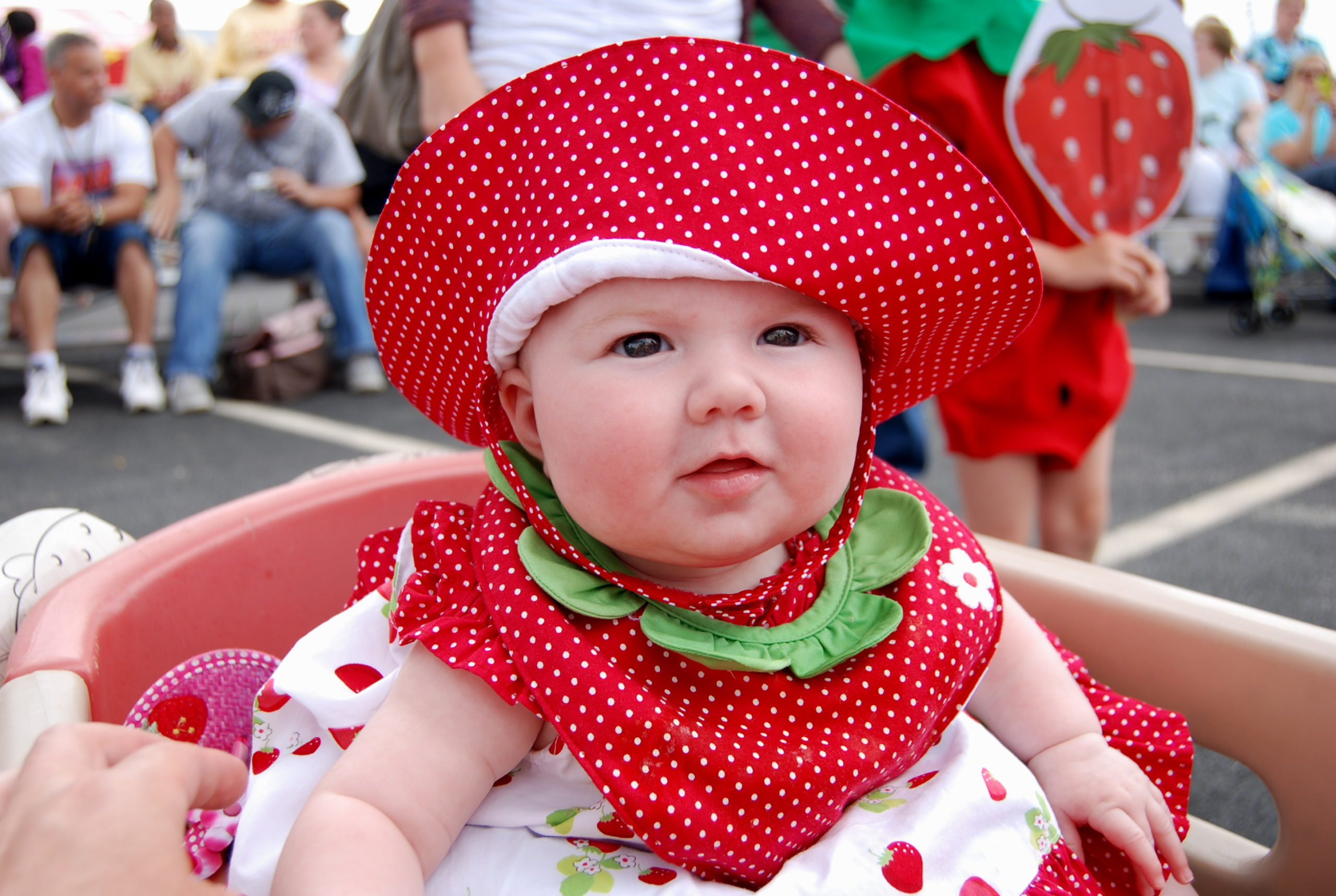 Celebrate National Strawberry Day by Supporting the 2018 Strawberry Festival