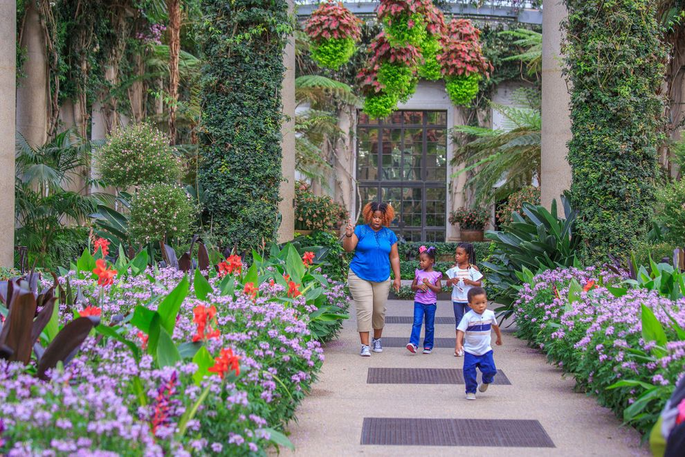 Vote for Longwood Gardens as the Best Botanical Garden in America
