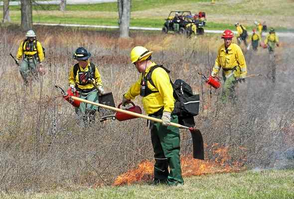 Invasive Species 'Feel the Burn' at Valley Forge Park
