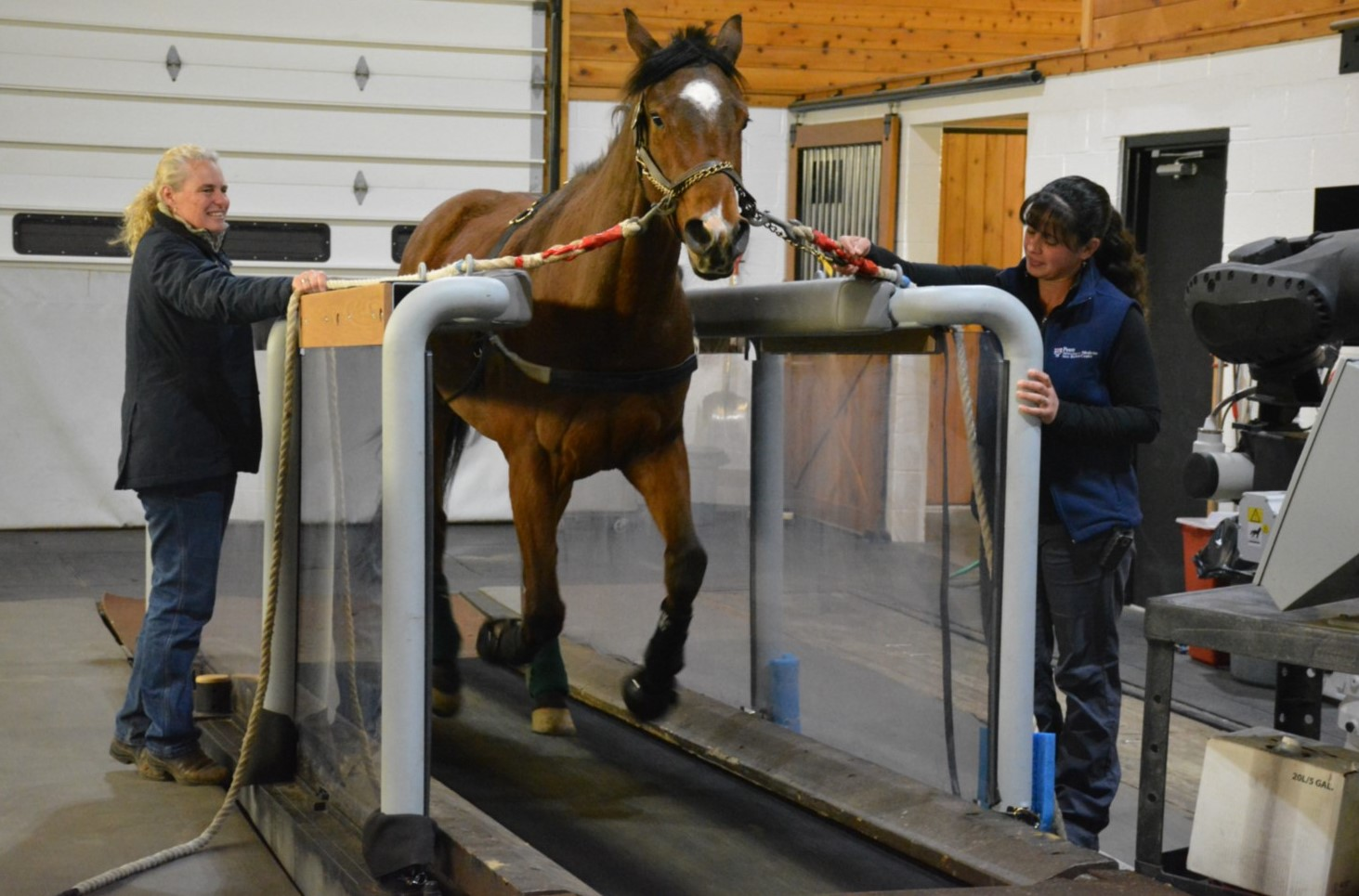 Researchers in Kennett Square, West Chester Battle Equine Doping to
