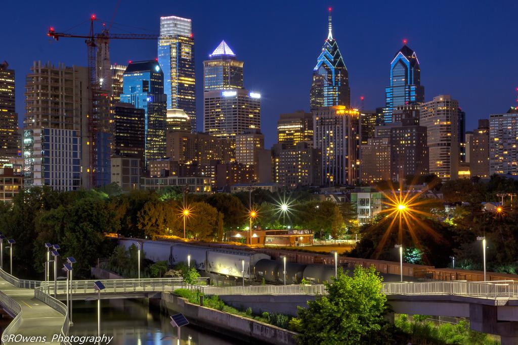 Philadelphia Skyline a Death Trap for Migrating Birds