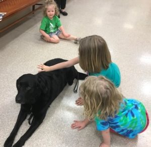 Through Grants, Fundraisers, and Donations, Sheriff's Office K-9