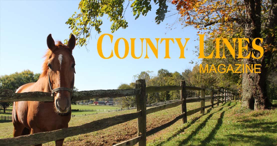 VISTA Careers – County Lines Magazine