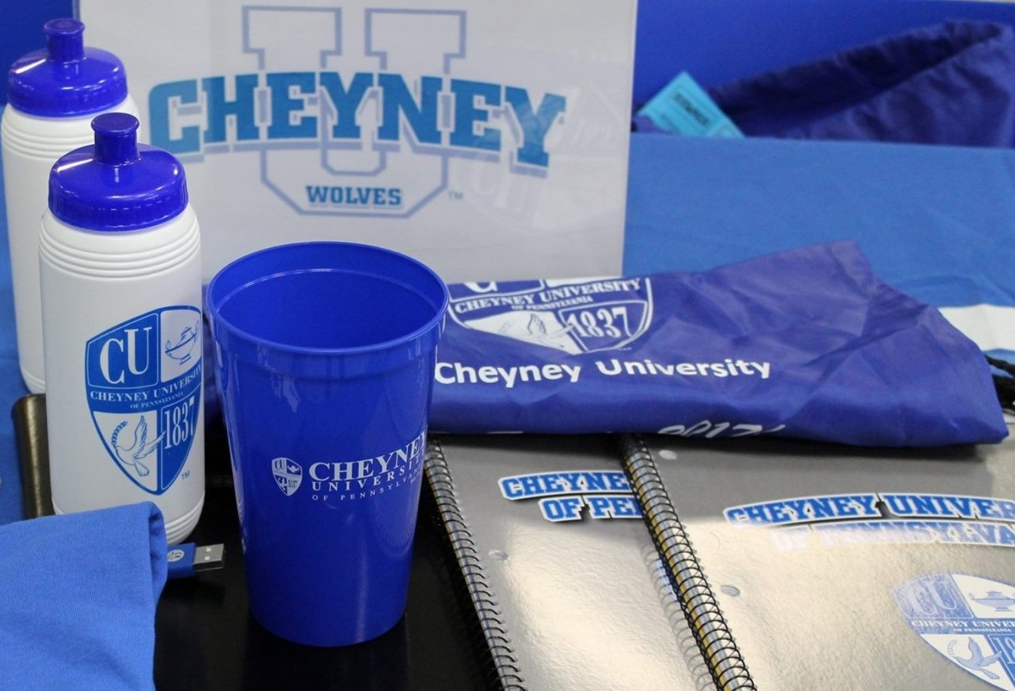 Cheyney University Gets One More Year to Implement Turnaround Plan