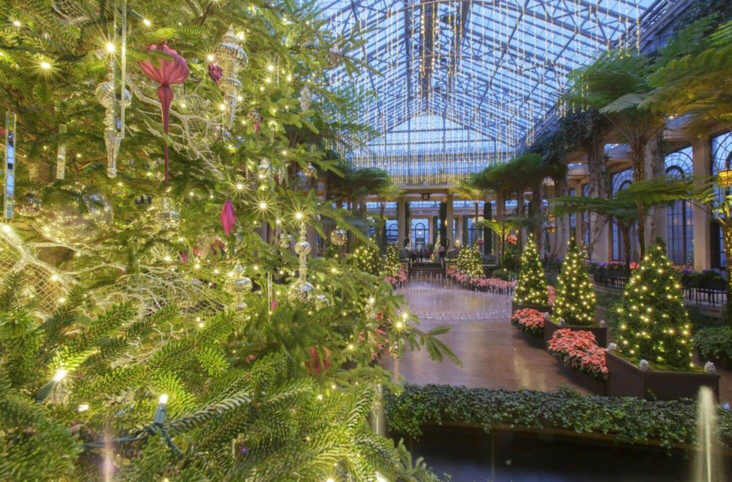 Longwood Gardens Named Winner of Best Botanical Garden Holiday Lights by USA Today Readers
