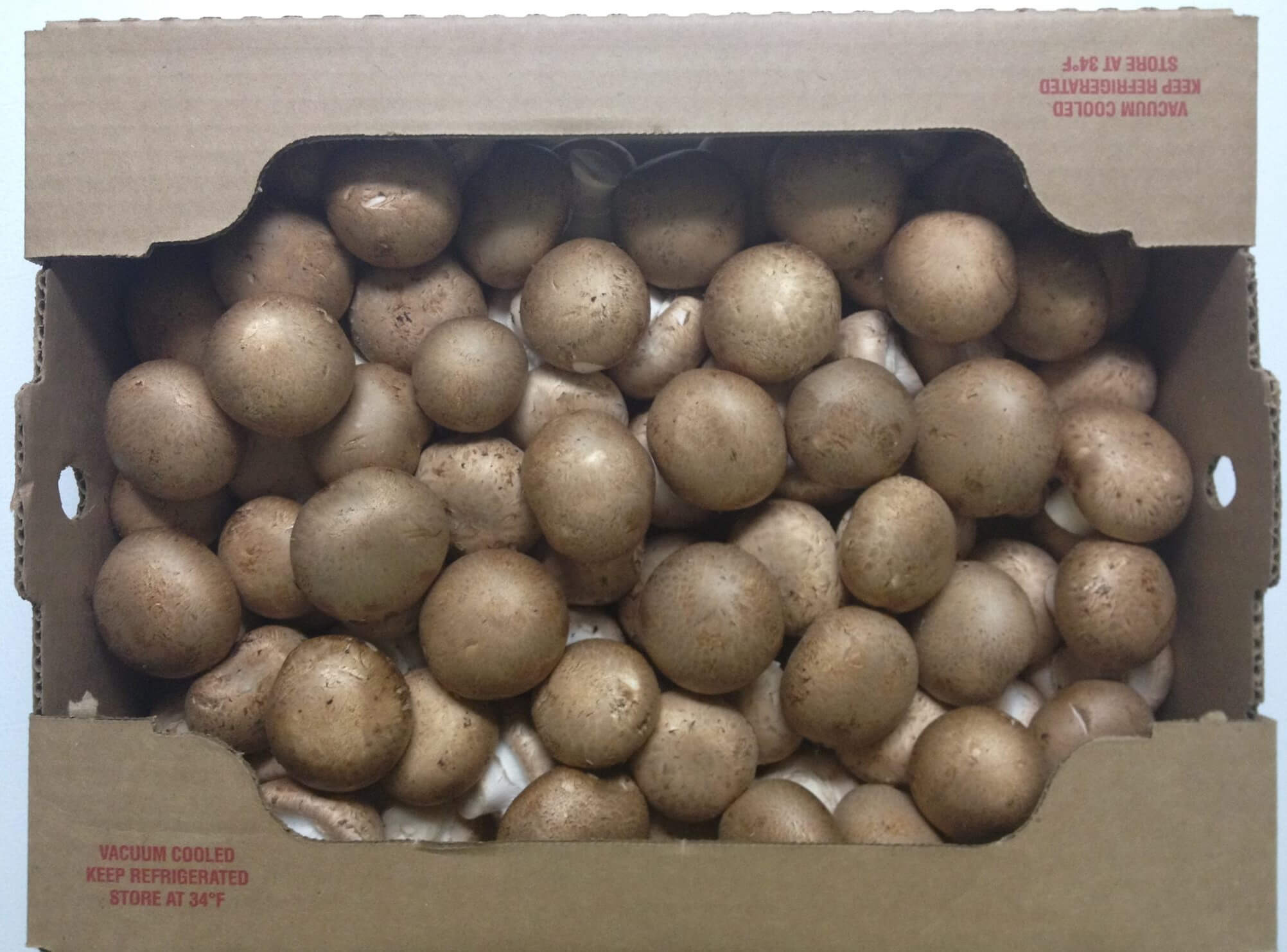 After Loss of Costco as Its Largest Customer, Local Mushroom Farm Files for Bankruptcy
