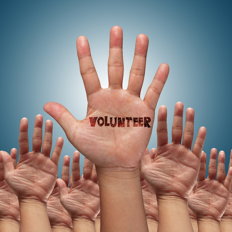 Let Your People Go – Volunteer!