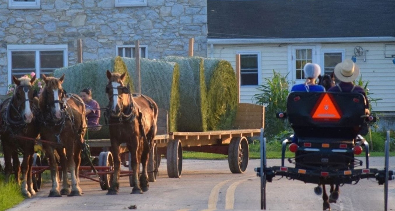 Local Amish Population Defies Urban Sprawl, Continues to Grow