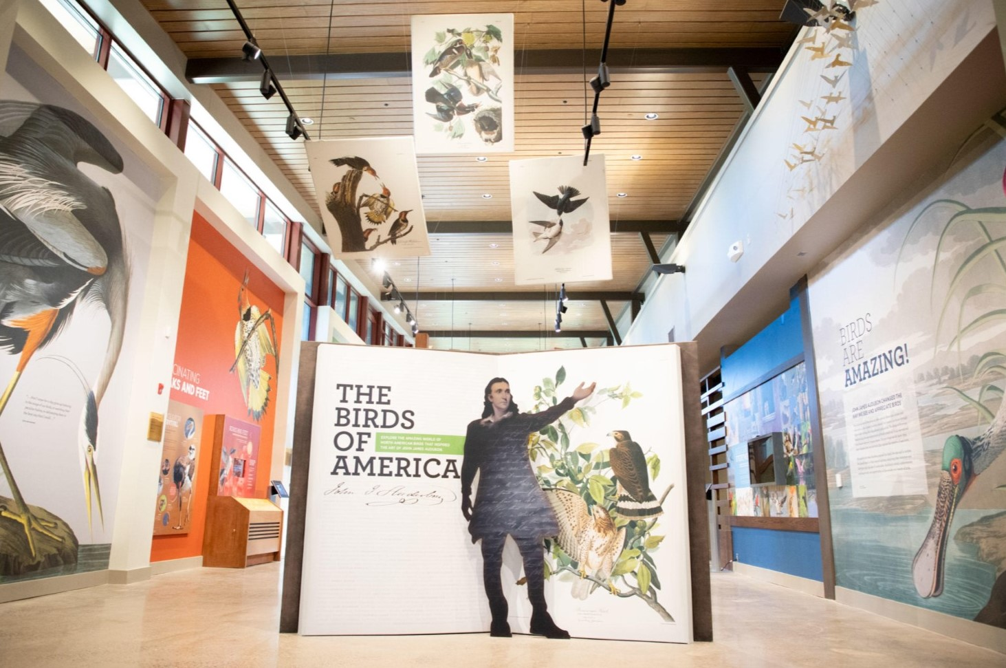 Exhibits Designed by West Chester's Gecko Group Wow Visitors at New Museum