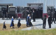 Local Amish Gather in Franklin Township for Day-Long Wedding Celebration