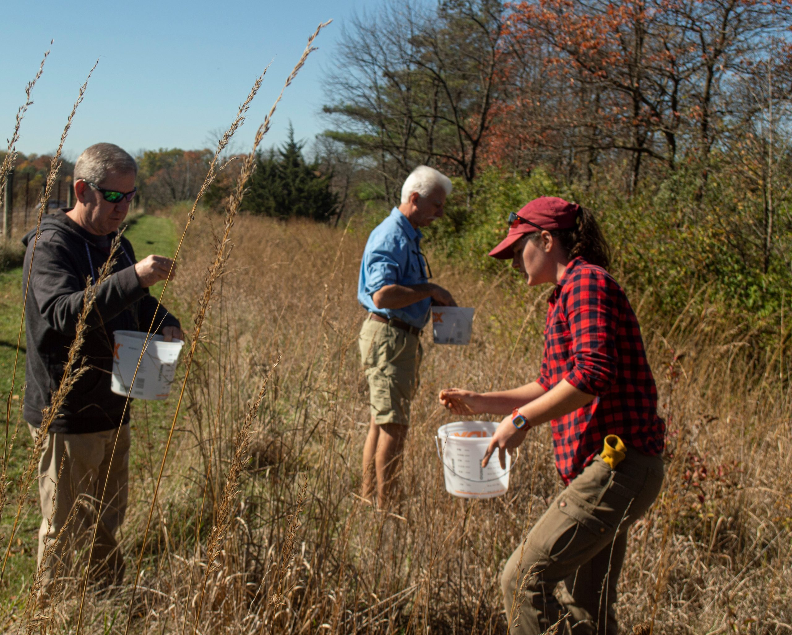 Natural Lands and Tyler Arboretum Partner to Save a Rare, Local Ecosystem