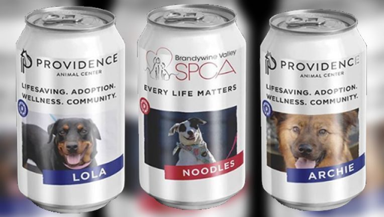 Brewery Teams Up with Brandywine Valley SPCA to Help Adoptable Dogs Find Forever Homes
