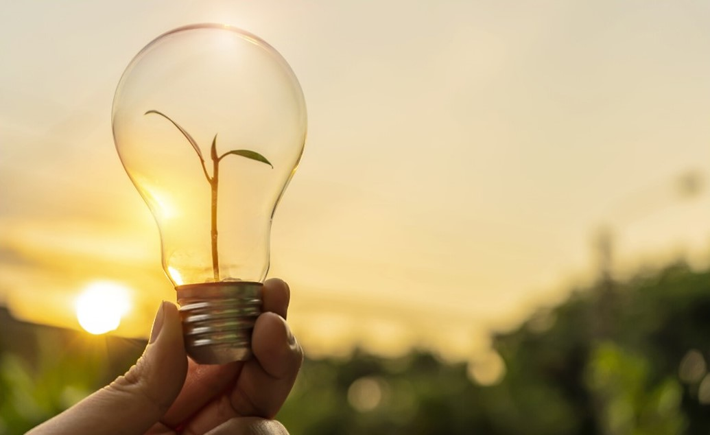 A Customized Solution: Sustainable Energy Management
