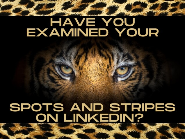 Have You Examined Your Spots and Stripes on LinkedIn?