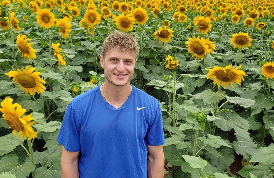 Sunflower Field in Chester Springs a Draw for Visitors, Lifeline for Nearby Businesses