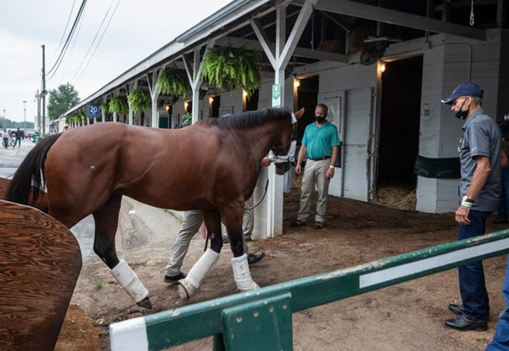 Horse Favored to Win This Weekend's Kentucky Derby Has Oxford Connections
