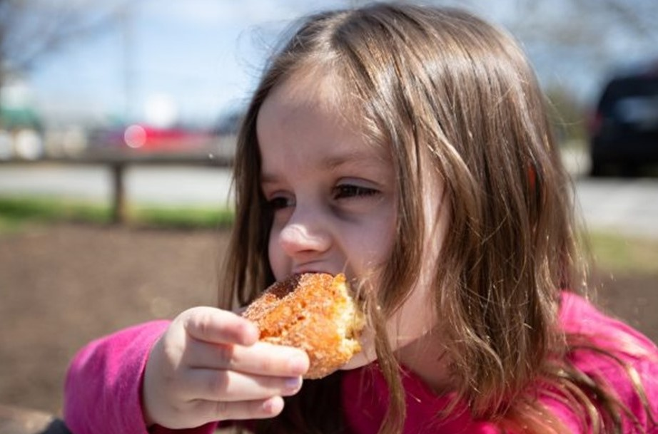 Fall Means Apple Cider Donuts, and No One Makes Them Better Than This Iconic Orchard