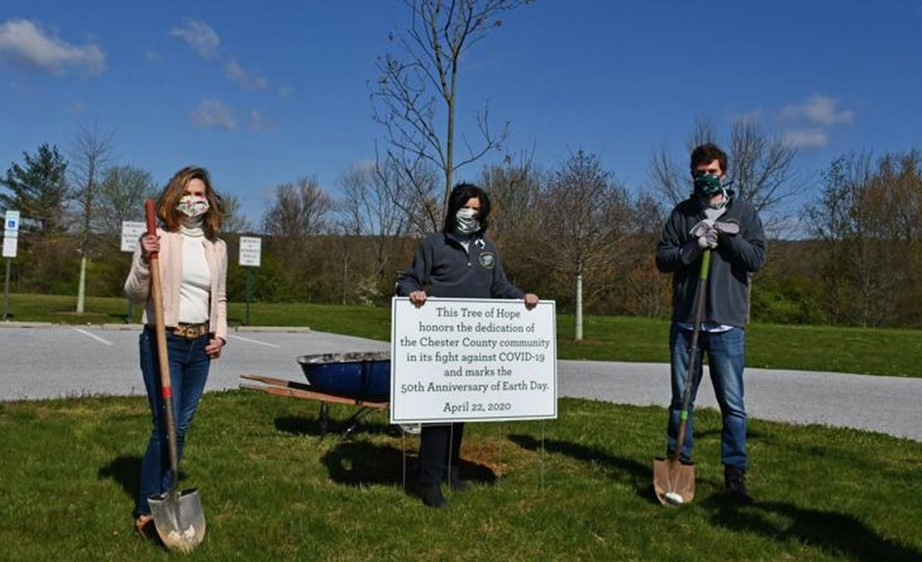In Belated Earth Day Celebration, County to Give Away Seedling Trees on Friday, Saturday