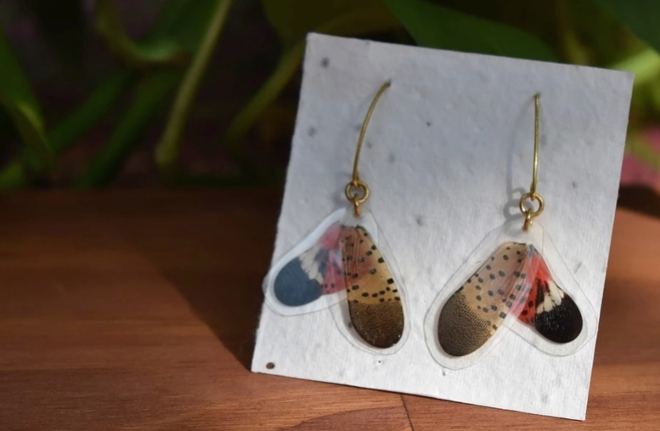 Local Artists Turn Death of Spotted Lanternfly into Catchy Music Video, Stylish Jewelry