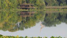 The John Heinz National Wildlife Refuge at Tinicum.