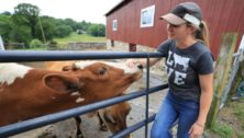 Best dairy farms creameries Chester County