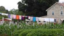 Amish Farm Bird in Hand Pennslyvania
