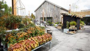 A look at the Terrain garden center in Glen Mills.