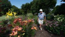 Gary and Susan Erb, Downingtown, garden